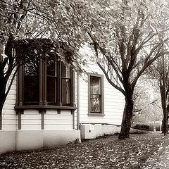 """photo """"Autumn / Осеннее"""""""