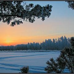 "фото ""Winter freezing morning"""