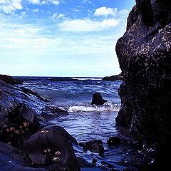 """photo """"sea"""""""
