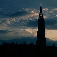"""фото """"tower"""""""