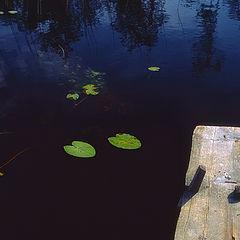 "photo ""Black river"""