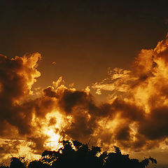"""фото """"In the golden of the sky..."""""""