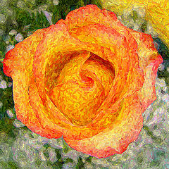 """фото """"Another Rose"""""""