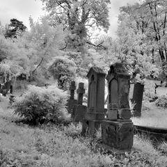 """фото """"Cemetery #101"""""""