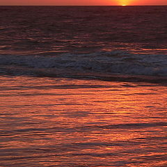 """фото """"assateague island sunrise"""""""