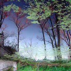 """фото """"old bridge and autumn..."""""""