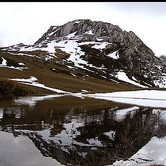 "photo ""the winter"""