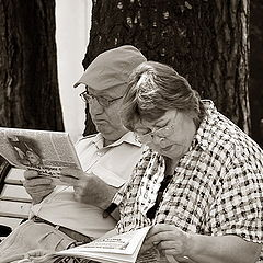"photo """"Log hut""-a reading room :-)"""