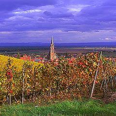"фото ""Dambach-la-Ville, Bas-Rhin."""