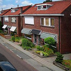 """фото """"Простая голландская улица или вид из моего окна."""""""