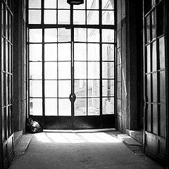 "photo ""the doors."""