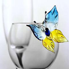 """фото """"Бабочка и стакан"""""""