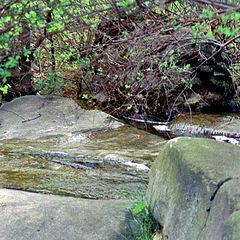 "photo ""Stone and stream"""