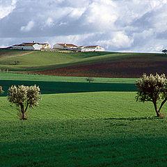 "photo ""Alentejo landscape"""