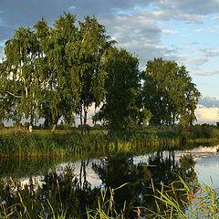 "photo ""The old lake"""