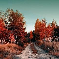 "фото ""the path to everyware"""