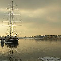 "photo ""City on the Neva river"""