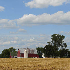 """photo """"Farm country in summer"""""""
