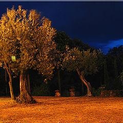 """фото """"Тоскана. Ночной снимок"""""""