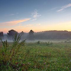 "photo ""Pasture"""