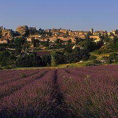 """photo """"Saignon, Vaucluse"""""""