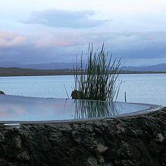 """photo """"Casa Marina Reef"""""""