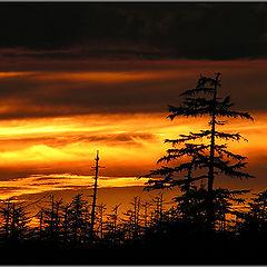 """фотоальбом """"Chayvo Sunsets"""""""