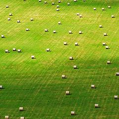 """фото """"Rolls on field II"""""""