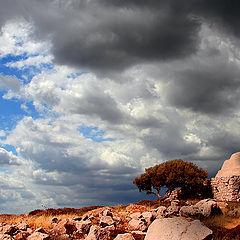 """фото """"За веком век уносят облака"""""""