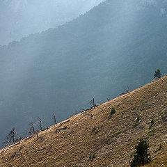 "photo ""Mountainside"""