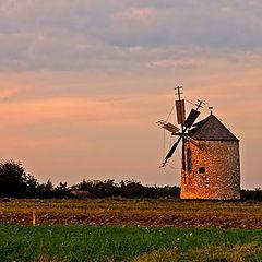 """фото """"windmill"""""""