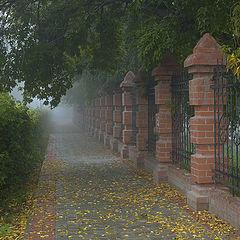 "фото ""September. The Misty Morning."""