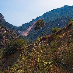 "photo ""Mountain landskape"""