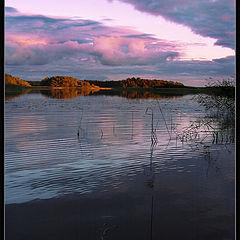 "photo ""My first autumn evening"""