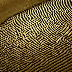 "photo ""Gold sand"""
