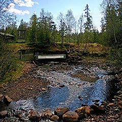 """фото """"The creek"""""""