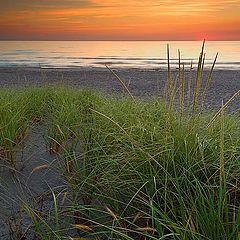 """фото """"Ах эти пляжи в сентябре"""""""