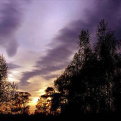 """фотоальбом """"Clouds"""""""