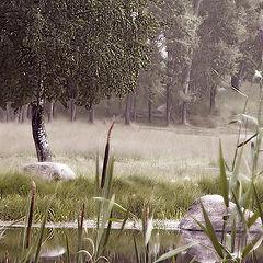 "photo ""Old Pond"""