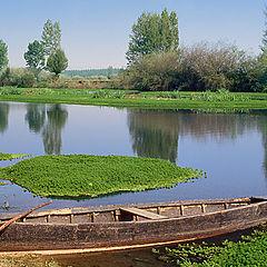 "photo ""Rice field"""