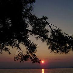 "photo ""Thassos island"""