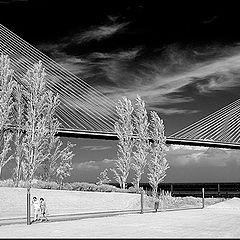 """фото """"Under of bridge"""""""