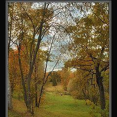 """album """"The magician Autumn"""""""