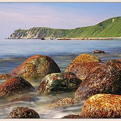 """photo """"Sea Coast"""""""