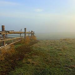 """фото """"Утро, солнце и туман"""""""