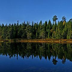 "фото ""Fall reflection"""