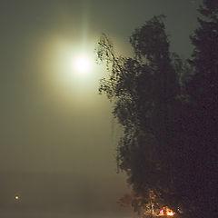 """photo """"Moon night"""""""