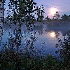 """фото """"Ранняя болотная картинка с Луной"""""""