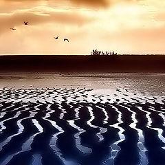 "фотоальбом ""water patterns"""
