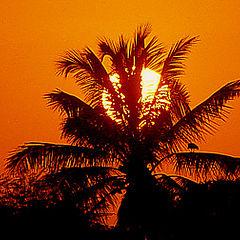 """photo """"Sunrise in Piaui"""""""